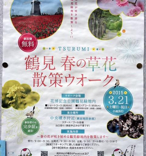 鶴見春の草花散策ウォーク