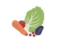 旬の野菜市