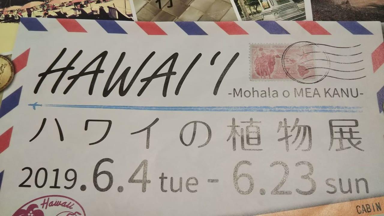 ハワイ植物展